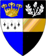 The arms granted to Surrey County Council in 1934 and used until 1974