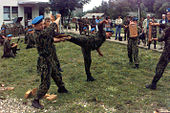 Russian paratroopers - martial arts demonstration